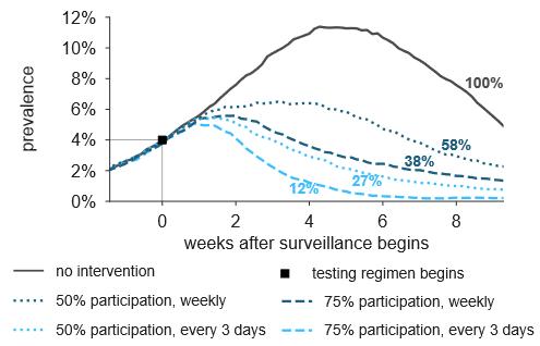 - Schnelltests, von 75% der Bevölkerung alle 3 Tage durchgeführt, könnten die Pandemie innerhalb von sechs Wochen eindämmen bzw. das Auftreten von Neuinfektionen um 88% reduzieren. Auch eine 50%ige Beteiligung und/oder Reduktion auf wöchentliches Screening hätten immer noch einen immensen Einfluss auf die Eindämmung der Pandemie (8, Abbildung aus Preprint, umformatiert, unter CC-by-nc-nd Lizenz).