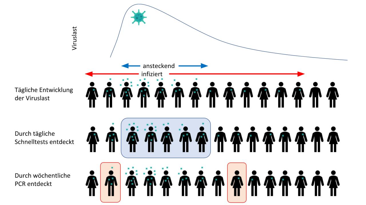 - Schematische Darstellung der durchschnittlichen Viruslast einer SARS-CoV-2 infizierten Person. Schnelltests entdecken vor allem ansteckende Personen, PCR ist sensitiver und entdeckt somit zusätzlich Infizierte, auch wenn diese nicht mehr ansteckend sind. Durch eine hochfrequente Nutzung von Schnelltests können deutlich mehr Menschen in ihrer infektiösen Phase erkannt werden als durch niederfrequente Nutzung der PCR. ©2020 rapidtests.org & rapidtests.de